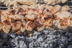 Pork Kebab Royaltyfri Fotografi