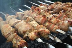 Pork kebab on the grill Royalty Free Stock Images
