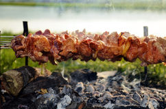 Pork kebab. Pork shish kebab on skewers baked on coals, on the shores of Lake Royalty Free Stock Images