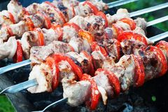 Pork kebab with tomatoes on the grill. Pork kebab with tomatoes roasted on the grill Royalty Free Stock Photography