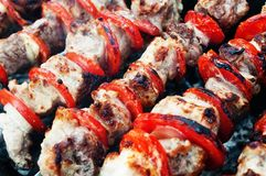 Pork kebab with tomatoes on the grill. Royalty Free Stock Photos