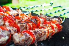 Pork kebab with tomatoes on the grill. Pork kebab with tomatoes roasted on the grill Royalty Free Stock Image