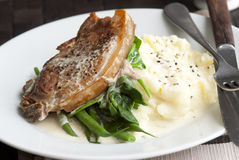 Pork with mashed potatoes Stock Photos