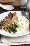 Pork with mashed potatoes Royalty Free Stock Photography