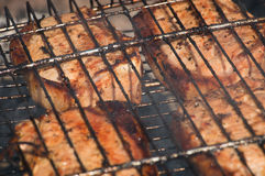 Pork meat cooked on barbecue grill Stock Images