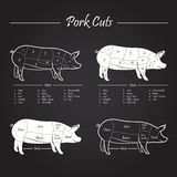 Pork Meat Cuts Scheme. Set of meat cuts diagram in vector style - white on blackboard Stock Images