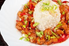 Pork meat with japanese rice Stock Photos