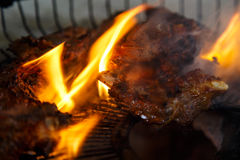 Pork meat roasting on fire Royalty Free Stock Photo