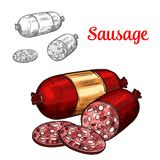 Pork meat sausage isolated sketch of sliced salami. Pork meat sausage sketch of sliced salami. Cured sausage or smoked frankfurter with red casing and golden Stock Photos