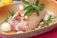 Pork meat. Some pork meat with herbs Stock Photos