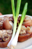 Pork meat and spring onion Royalty Free Stock Photos