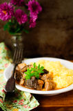 Pork and Mushroom Stew with Polenta, vintage effect, copy space for your text Stock Image