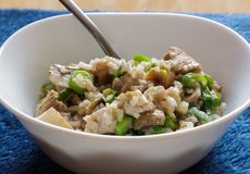 Pork and mushroom Stroganoff with rice on view Stock Images