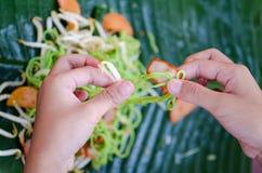 Pork noodles Stock Image