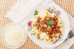 Pork Ragu with Pipe Pasta Royalty Free Stock Photos