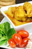 Pork Rib Curry. Stock Images