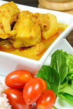 Pork Rib Curry. Royalty Free Stock Photos