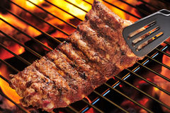 Free Pork Ribs Royalty Free Stock Image - 27070566