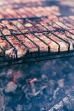 Pork ribs cooked on the grill Stock Image