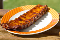 Pork ribs on plate Stock Images
