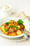 Pork and Sauerkraut Single Pot (Eintopf) Royalty Free Stock Image