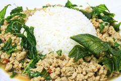 Pork sauteed with garlic and hot basil Royalty Free Stock Image