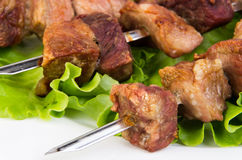 Pork shashlik close up Royalty Free Stock Photo