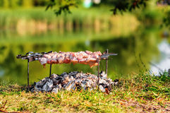 Pork shashlik on skewers Stock Photos