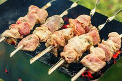 Pork shashlik on skewers Royalty Free Stock Images