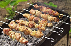 Pork Shish kebab on Fire. Royalty Free Stock Image