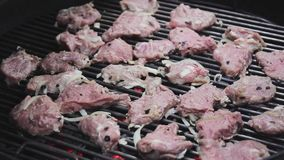 Pork shish kebab on the nature in the grill. Men put the meat stock video