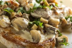 Pork sirloin with white sauce made from sour cream and mushrooms royalty free stock images