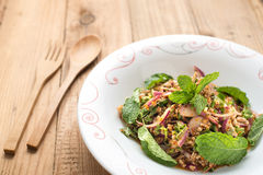 Pork spicy salad Stock Images