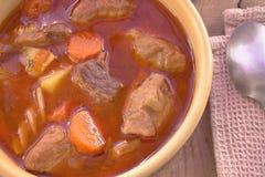 Pork stew in ceramic bowl Stock Photos