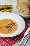 Pork stew and homemade bread and pickles Royalty Free Stock Image
