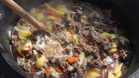 Pork stew with potatoes stock video