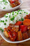 Pork stew with rice Stock Photography