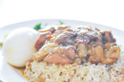 Pork stewed on rice Stock Images