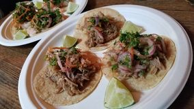 Pork Tacos on a plate Royalty Free Stock Images