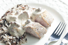 Pork tenderloin Stock Photography