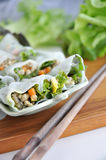 Pork and Veggie Rolls Dish Stock Image