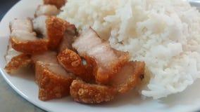 PorkFried med ris Arkivfoton