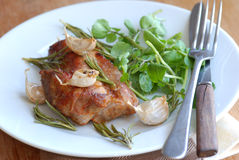 porkwatercress Royaltyfri Foto
