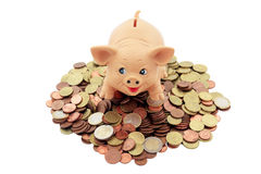Porky with coins. Piggy bank with a Porky on heap of euro coins and cents trimmed and isolated Stock Image