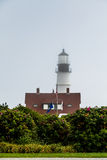 Porland Head Lighthouse Beyond Shrubs Royalty Free Stock Photography