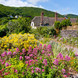 Porlock Weir. Wildflowers and cottages on the beach at Porlock Weir, Somerset England UK Royalty Free Stock Photo