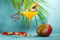 Porn Gwiazdowy Martini Fotografia Stock
