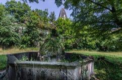 Porosła fontanna zdjęcia stock