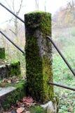 Porosły kamienia ogrodzenia słup obraz stock