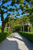 Porosły przejście w podwórzowym ogródzie Wuerzburg resid obrazy royalty free